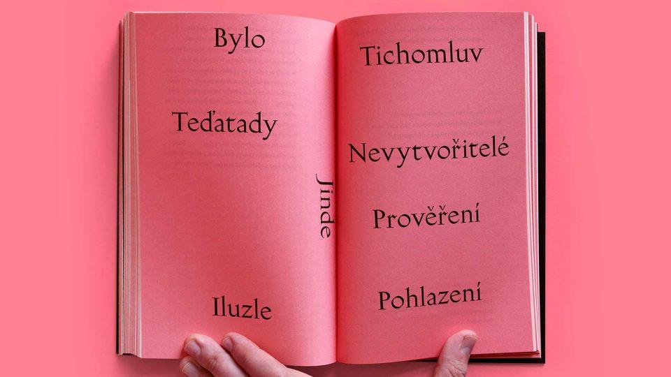 Kniha Neradost autora Karla Novotného