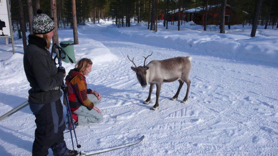 Laponské setkání