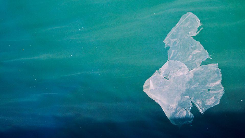 Igelitka - igelitová taška - znečištění moře