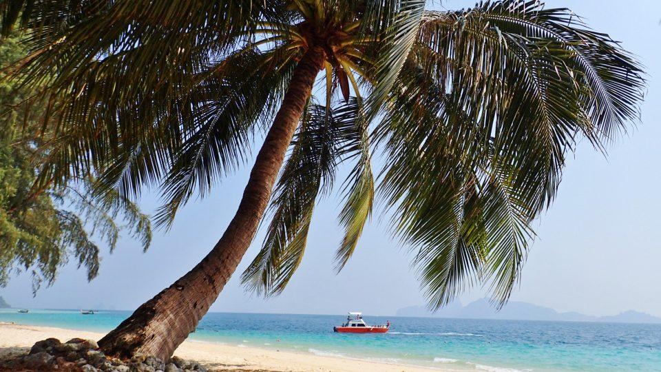 Lezení po šestitisícovkách a trekování v divočině kompenzujeme potápěním v tropickém moři
