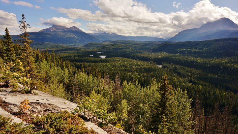Monkmanův park v Britské Kolumbii v Kanadě znamená skutečnou divočinu