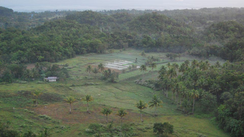 Krajina na ostrově Boholu