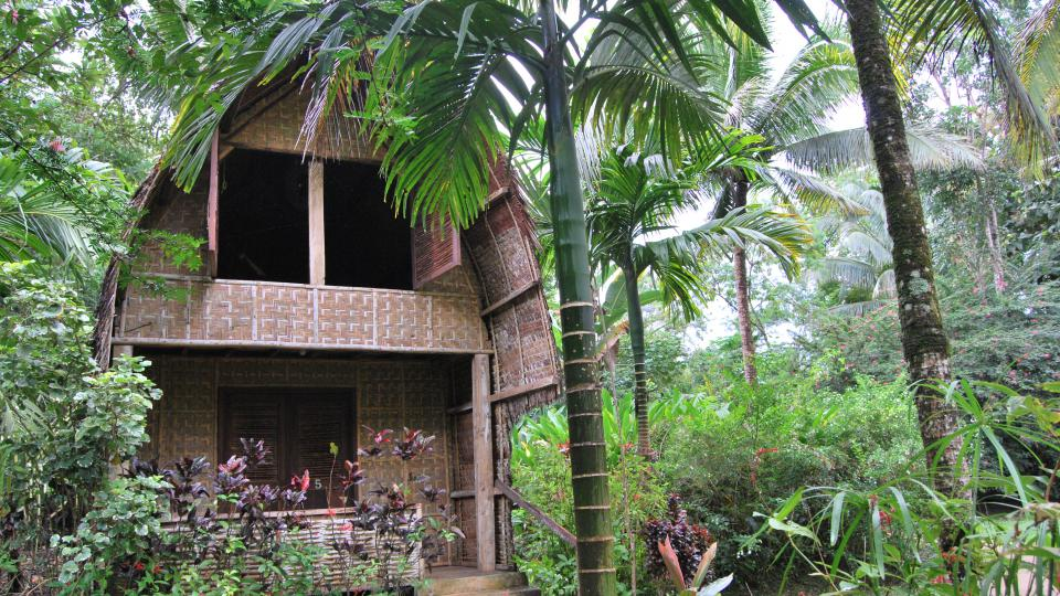 V ochranářské stanici Habitat Bohol, uprostřed Národního parku Rajah Sikatuna v Bilaru, můžete spočinout v dřevěném domku