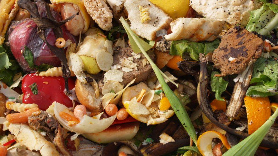 Vyhozené potraviny - plýtvání potravinami