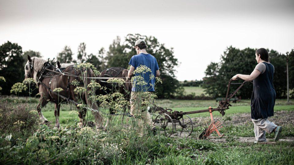 Farma Lukava, Jana a Martin Rosenbaumovi