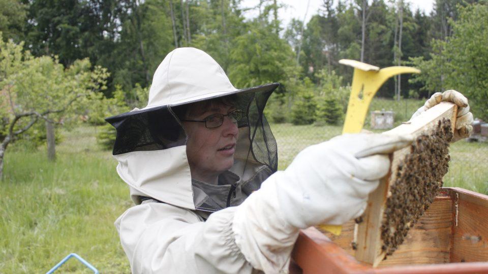K dobrému včelaření je ale potřeba lítat kolem včelnice často a celý rok
