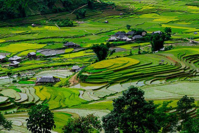 Barvy a tvary rýžových polí JV Asii