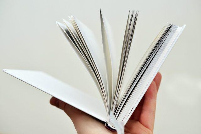 Literární kritik by měl být spíš samotář