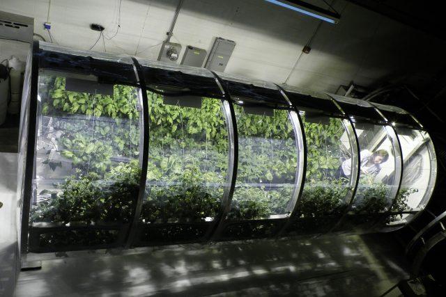 Na Marsu a Měsíci se bude hospodařit v nafukovacích sklenících