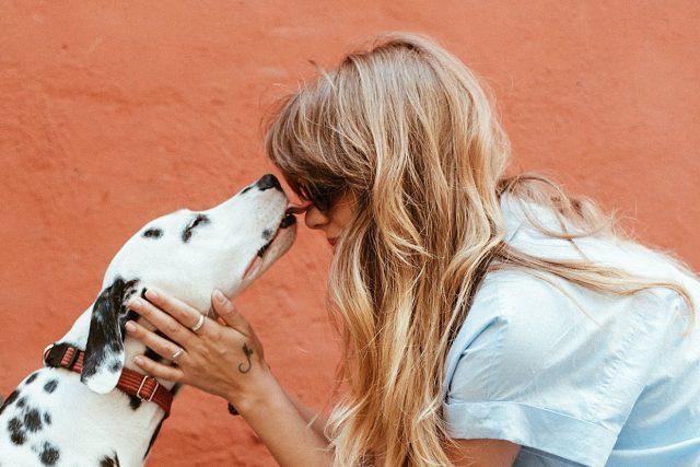 pes,  žena | foto: Pexels,  CC0 1.0