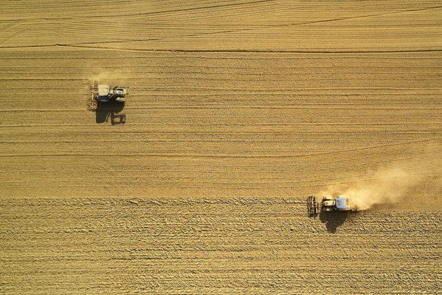 zemědělství | foto: Unsplash,  CC0 1.0