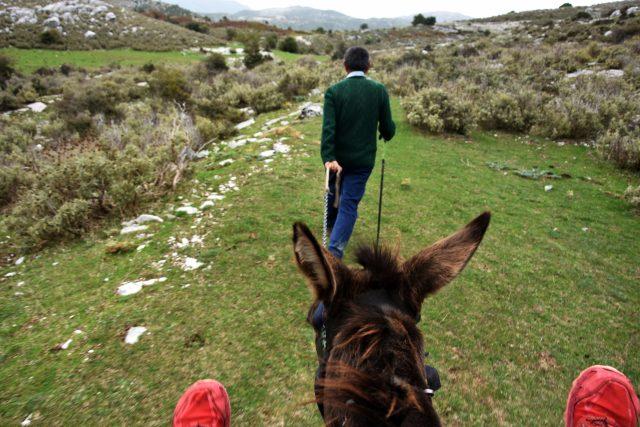 Z putování Viktorky Hlaváčkové Černou Horou a Albánií