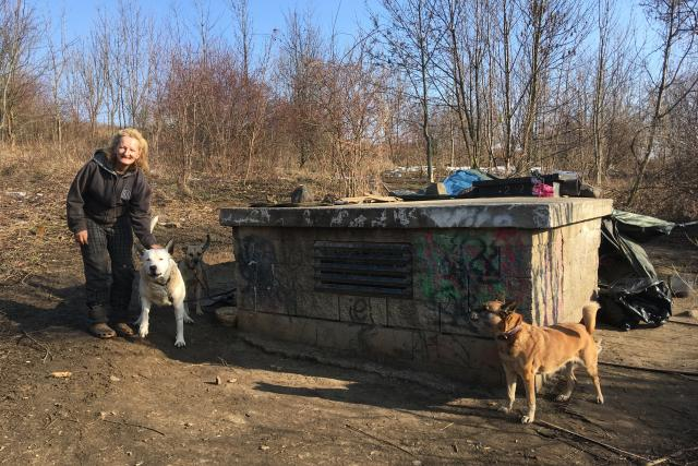 Do azylového domu paní Jitka se psy nemůže. Město jí chce pomoci půjčením tzv. iglú