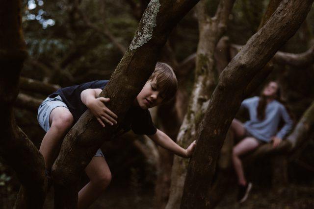 děti – děti v lese