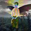 halucinace - LSD - psychedelika